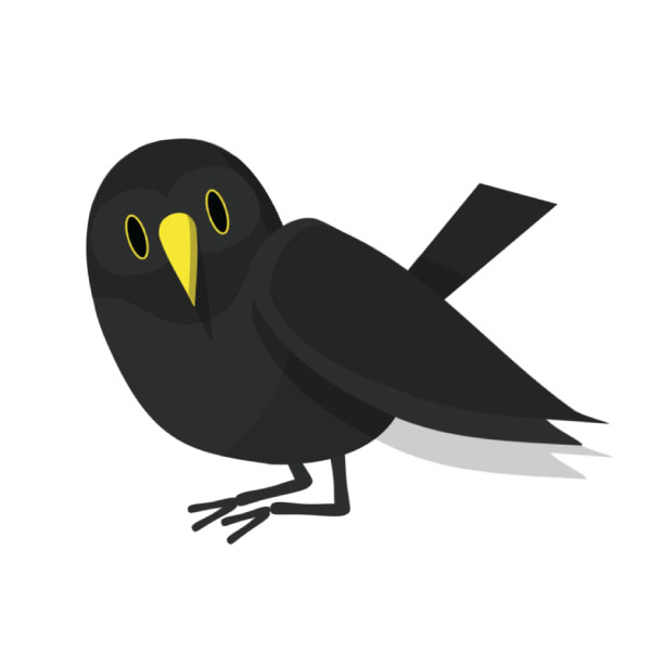 In second place, the tuneful blackbird