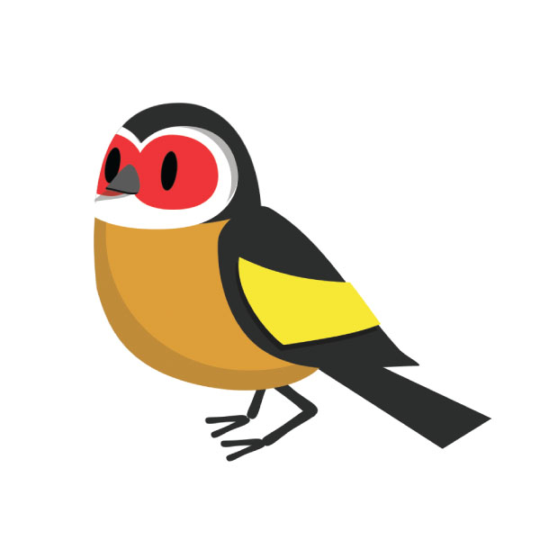 In third place the colourful goldfinch