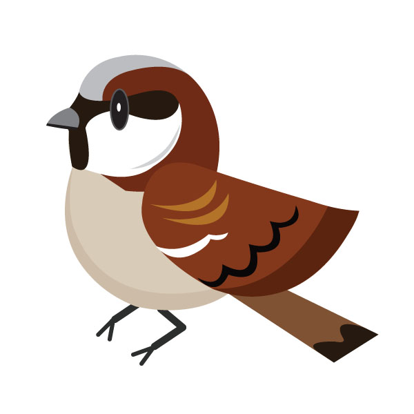 In seventh place, the humble house sparrow
