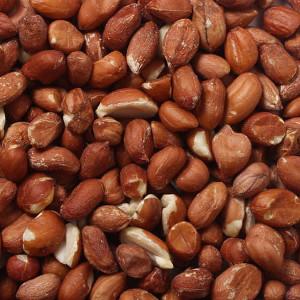 Premium Wild Bird Peanuts