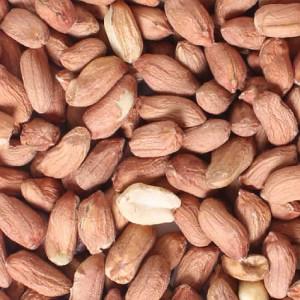 Standard Wild Bird Peanuts