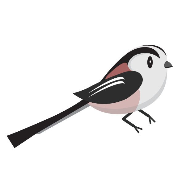 And in fifth, the long-tailed tit