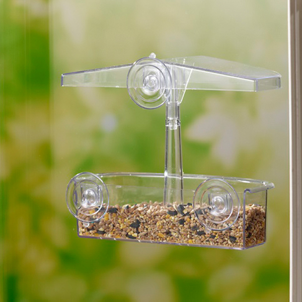 Window observer feeder