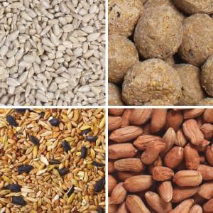Bird_Food_Bundle