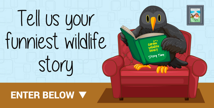 Tell us your funniest wildlife story