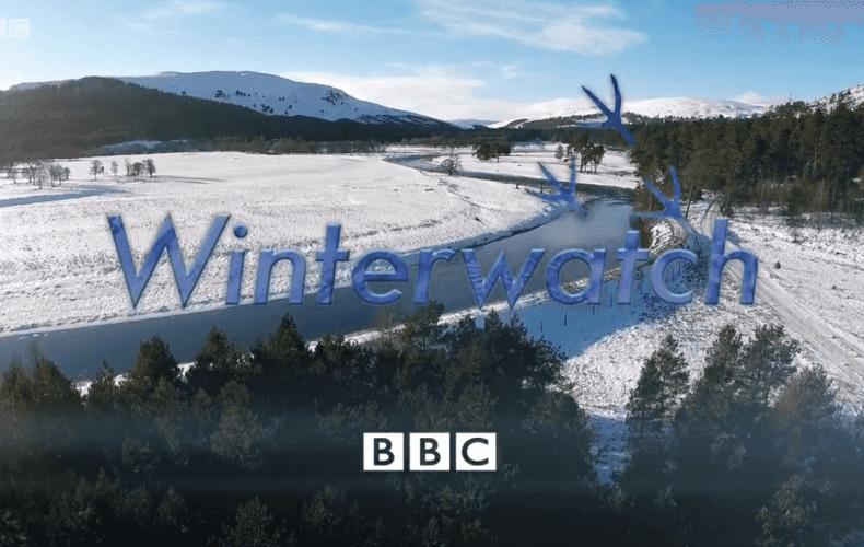 Winterwatch 2016