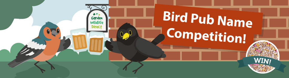 bird-pub-name-competition-banner